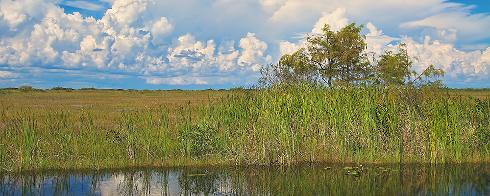 Okeechobee: Life's Natural Hidaways